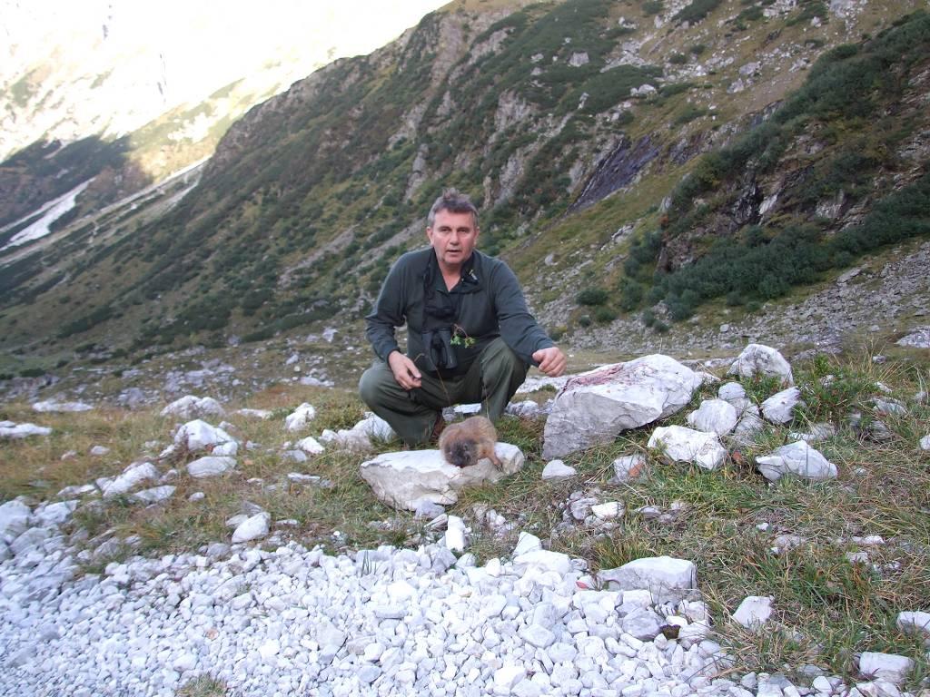 Lov na mrmota-Austrija